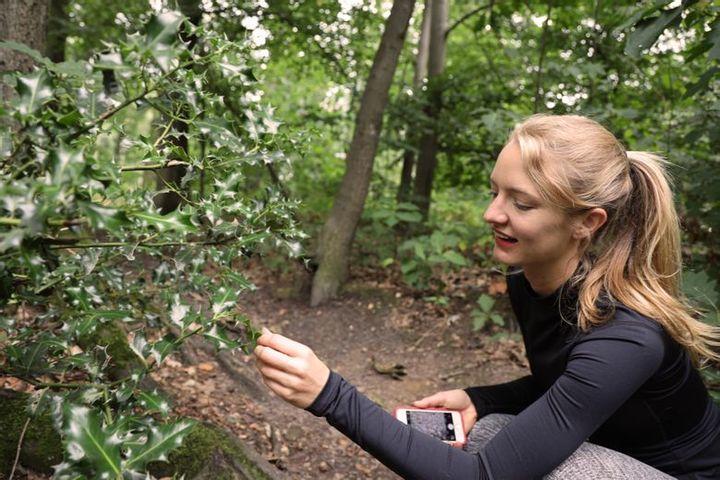 Botanical Jogging Tour of Grafenberger Wald